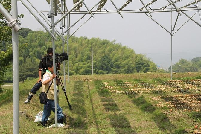 2015.06.13.収穫テレビ局取材01