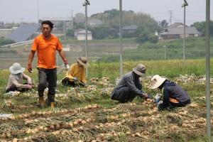 2015.06.13.収穫祭11